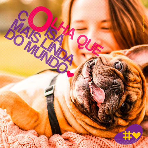 01 Post Pet Lovers - Cães - Imarketing
