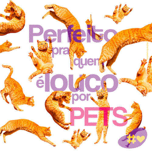 03 Post Pet Lovers - Cães - Imarketing