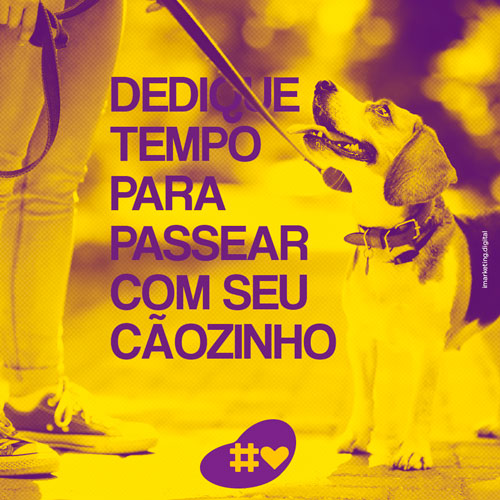 04 Post Pet Lovers - Cães - Imarketing